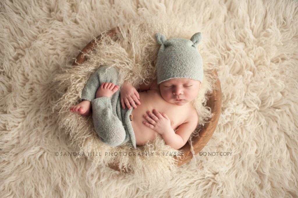 Hamilton Newborn Photographer