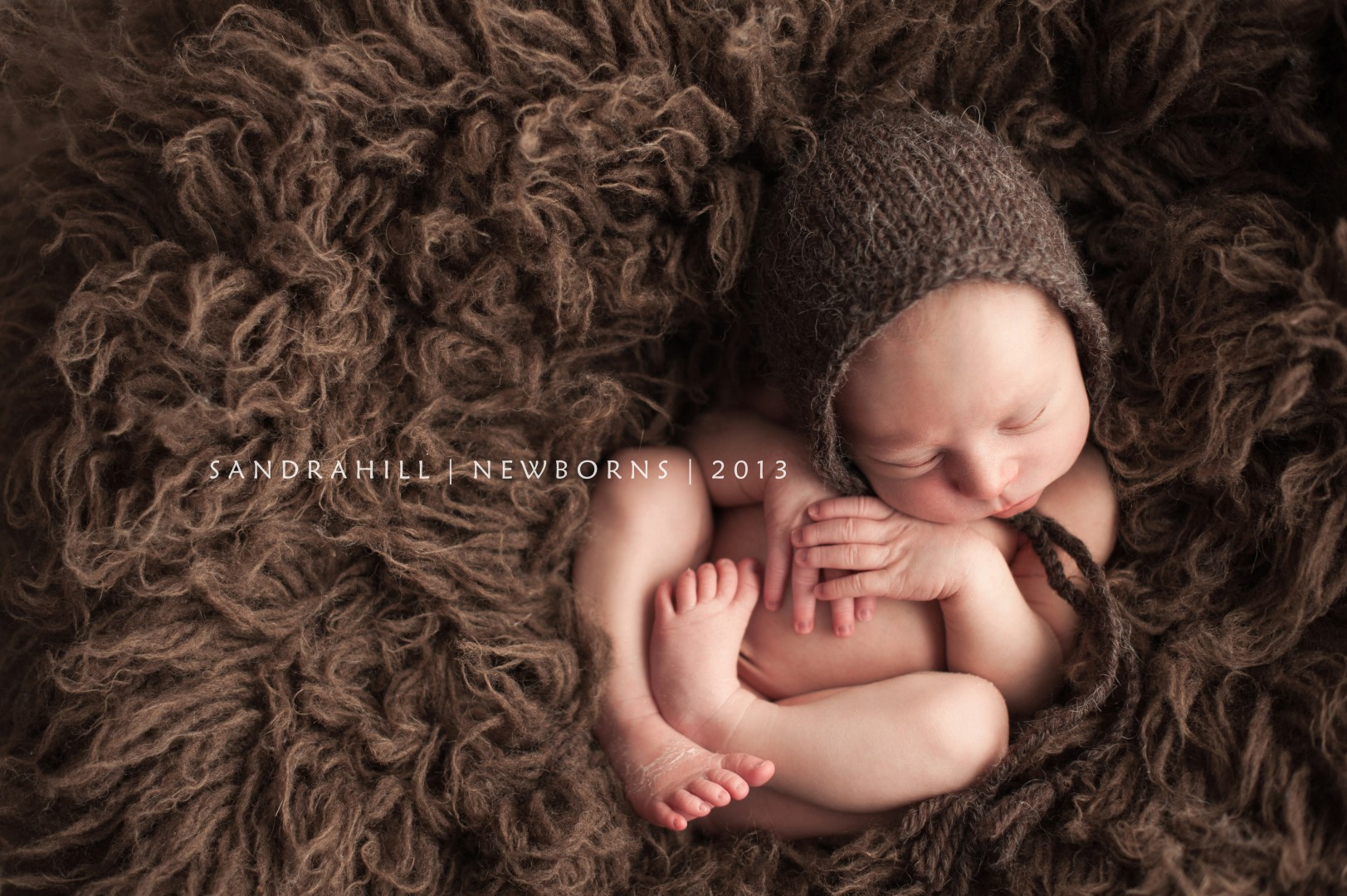 Brantford baby photography
