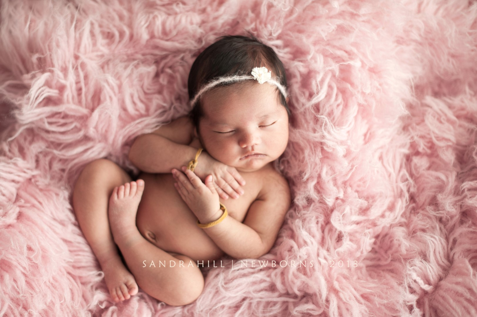 Six Nations Newborn Photography