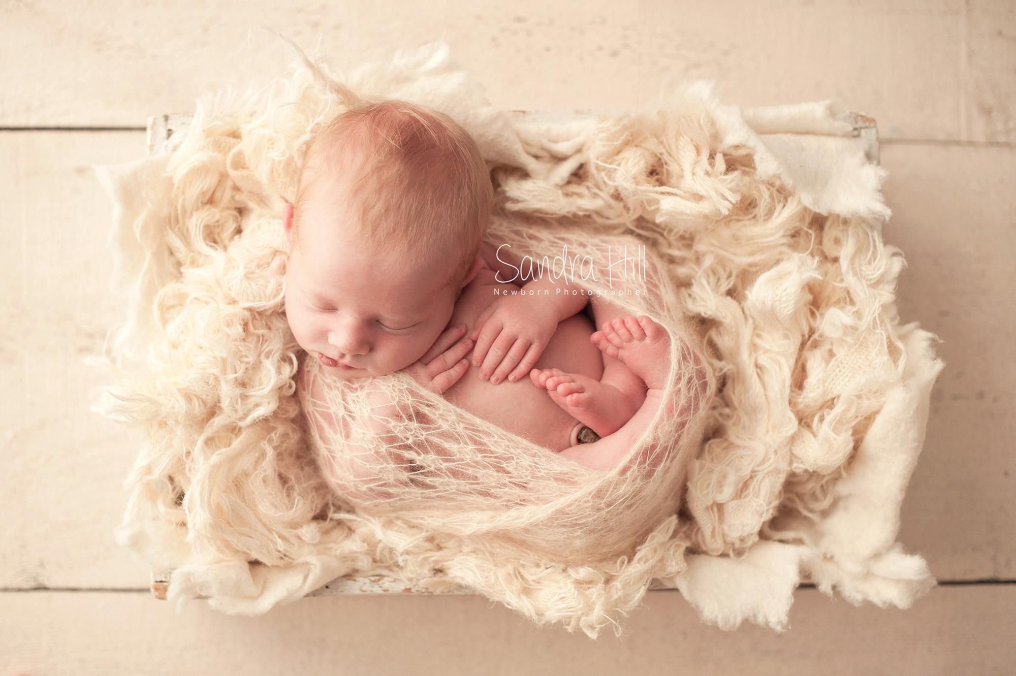 Hamilton Ontario Newborn Photographer