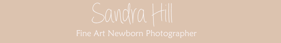 Sandra Hill Photography logo